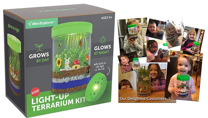 Light-up Terrarium Kit for Kids with LED